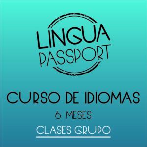 Logo Curso 6 meses idioma grupo